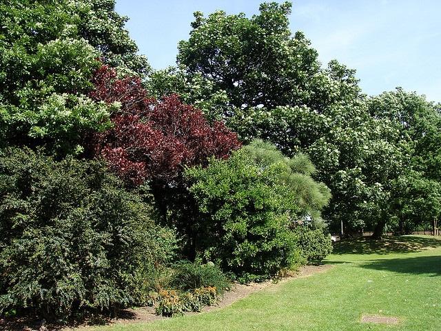 stanley park_liverpool