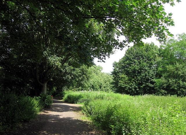 Park-Northampton