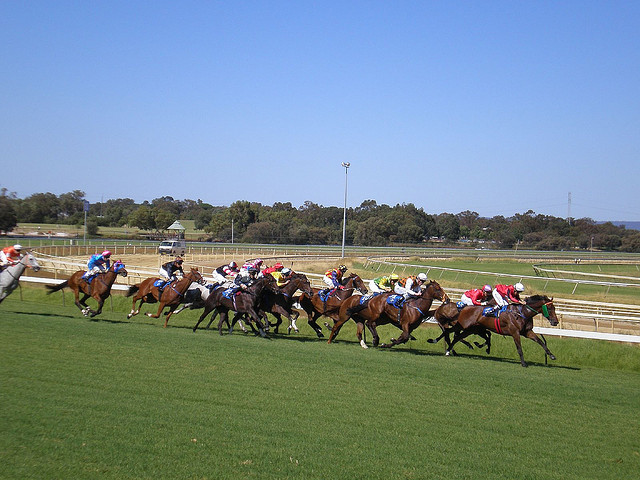 Racecourse_Perth