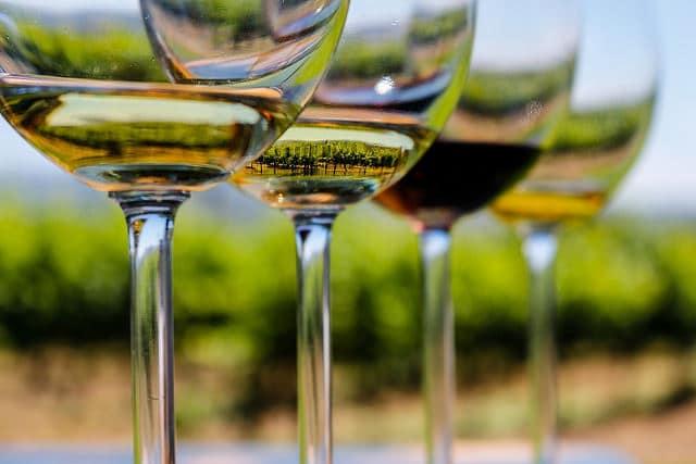 Wine Tasting_Sacramento