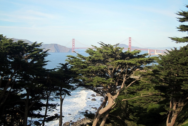 Lands End_San Francisco